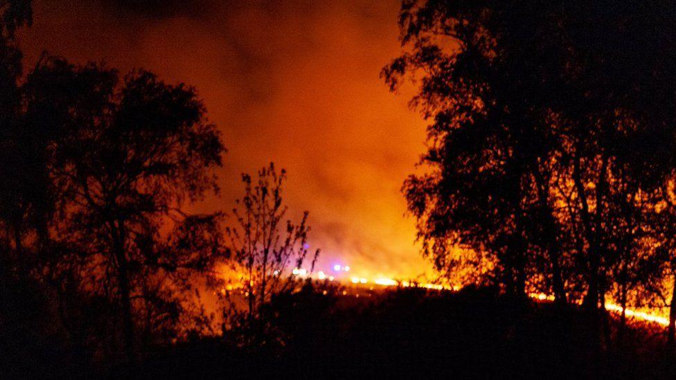 В Англии загорелся Ашдаунский лес, сказочная родина Винни-Пуха (Фото)