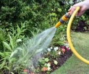 В Украине унормировали водоснабжения для приусадебных участков
