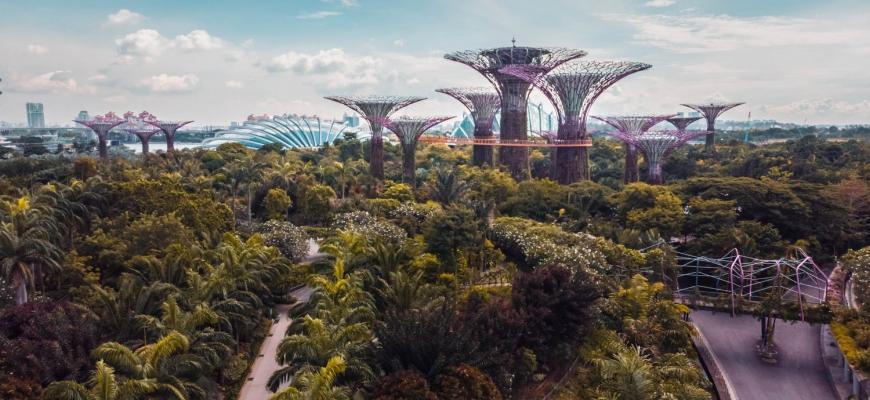 Жилищный сектор Сингапура столкнётся с серьёзным вызовом в 2019 году - прогноз