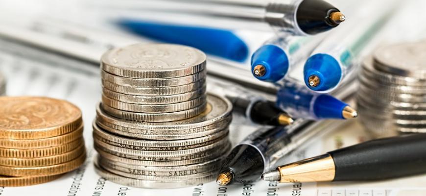В Министерстве финансов Швеции назвали причину неверных социальных выплат